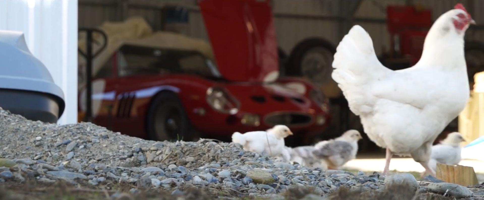 Ferrari 250 GTO replica 002