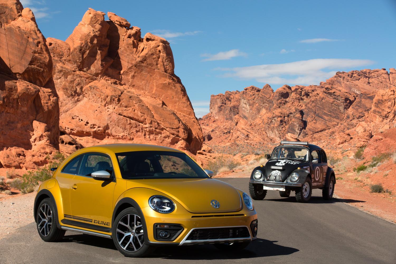 Beetle Dune-13